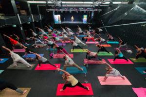 Yoga Fest  – Tradicionális Jógairányzatok Fesztiválja