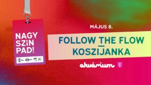 Nagy-Szín-Pad 2019 elődöntő: Follow the Flow / Koszi Janka