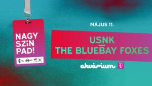 Nagy-Szín-Pad 2019 elődöntő: USNK / The Bluebay Foxes