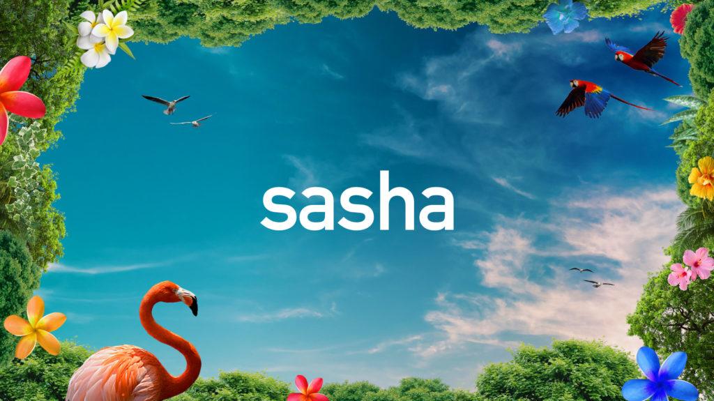 A Heineken és a Sun & Soda bemutatja: SASHA